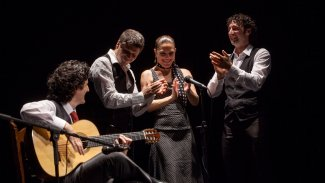Canizares Flamenco Quartet
